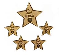 custom-employee-pins-1