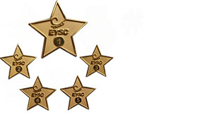 custom-employee-pins