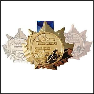 world-para-nordic-diecast-medals