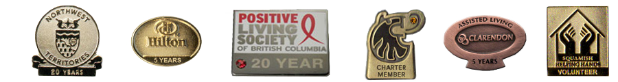 Volunteer-award-pins.png